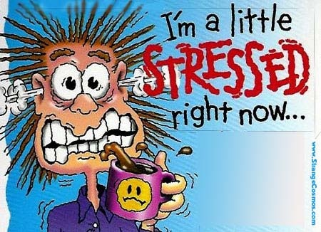 Stressed...Dr D Can help